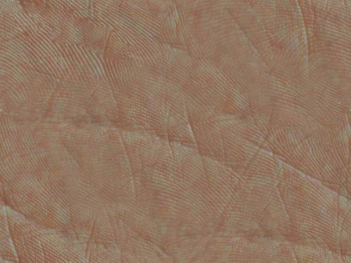Seamless Human Skin Texture Skin Textures Texture