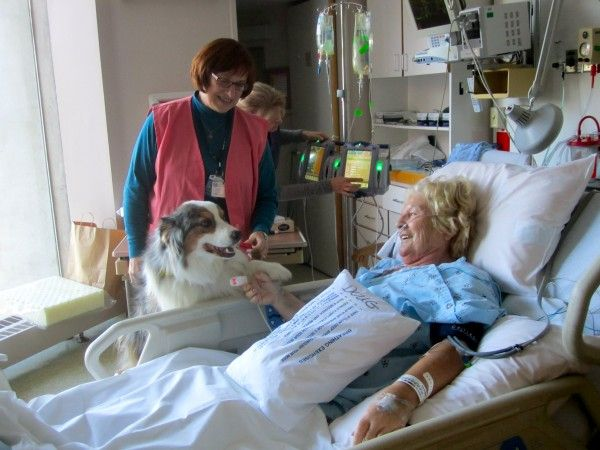 Darby shakes hands with a patient!