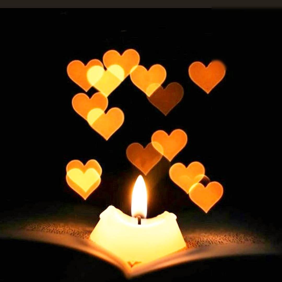 """1.موريير شفارتز : """" أهم شيء في الحياة أن نتعلم كيف نحب"""