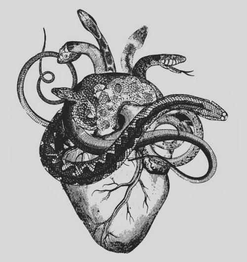 Laura Tortolita Gorgeousness Pinterest Tattoo And Draw