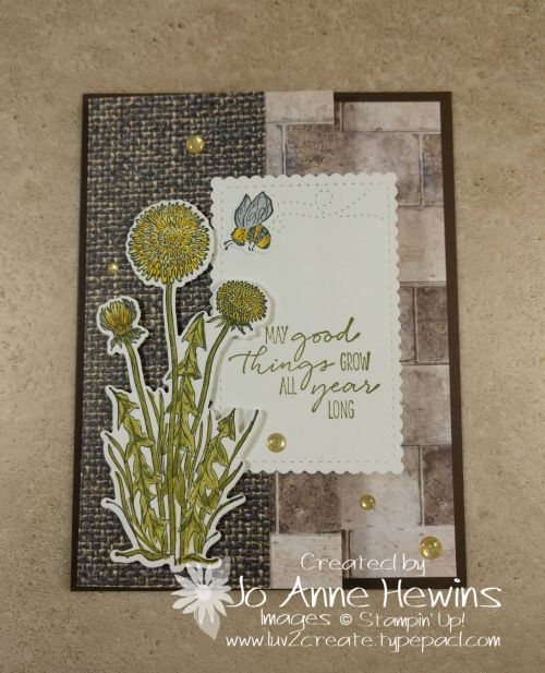 Garden Wishes Bundle and a Fun Fold by Jo Anne Hew