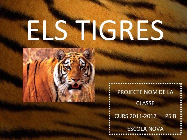 ELS TIGRES      PROJECTE NOM DE LA             CLASSE      CURS 2011-2012    P5 B          ESCOLA NOVA