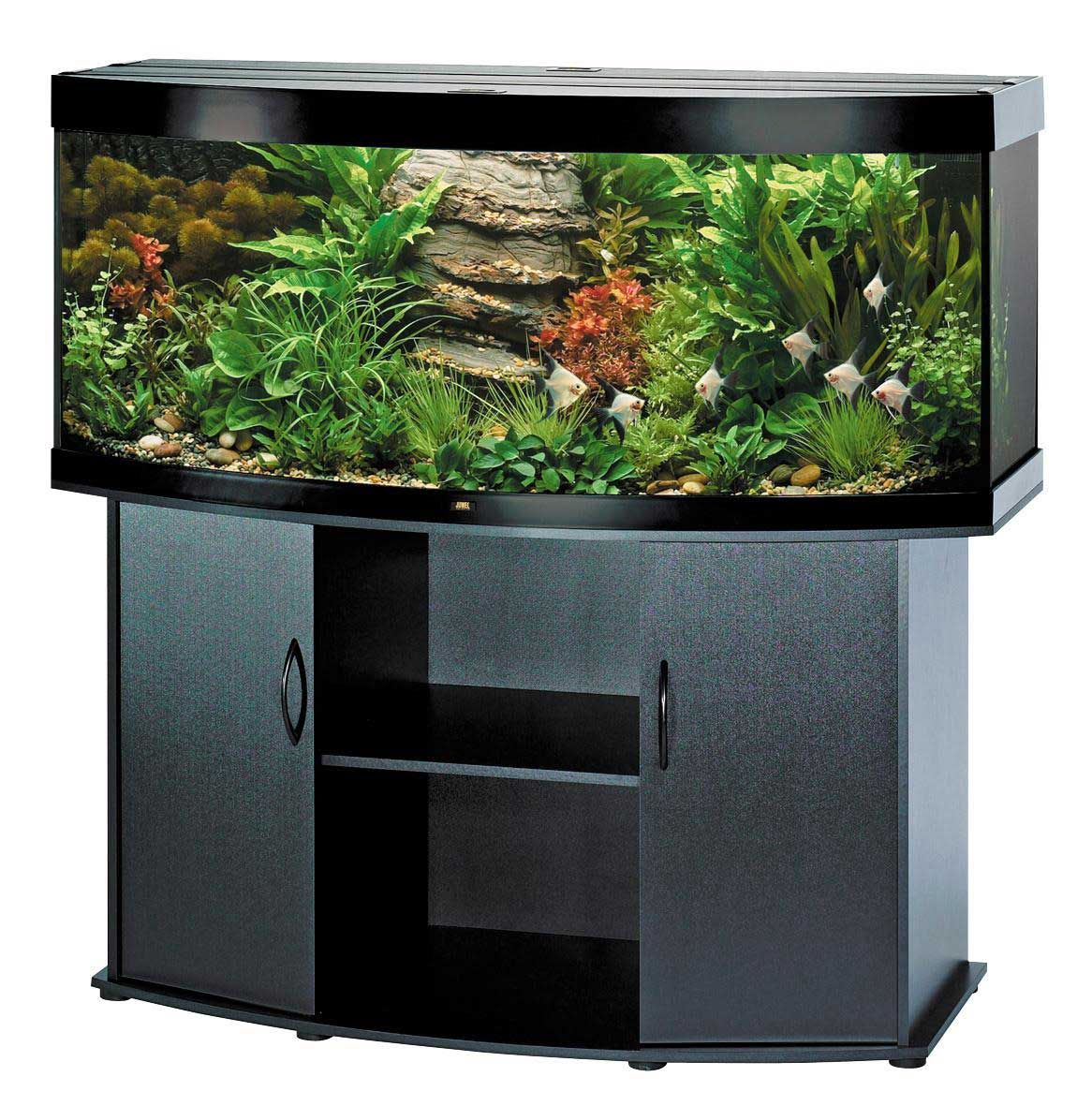 Fish Aquarium Design photo | design aquarium | Pinterest | Fish ...