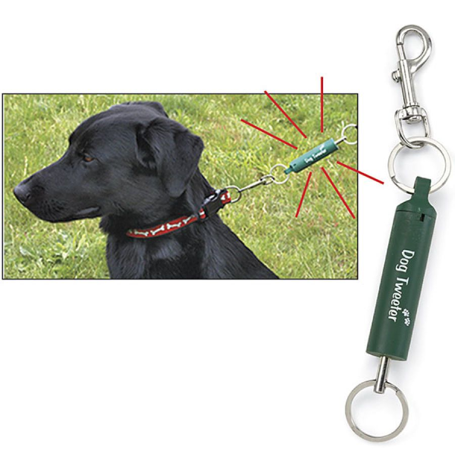 Dog Leash Trainer Simply Attach This Training Aid Between Your