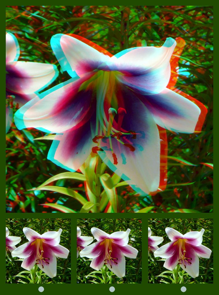 Pin by William Turner on Stereoscopic 3D photos & videos | 3d photo