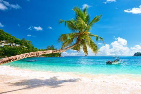 Seychellen Paradijs Op Aarde Seychellen Het Strand Vakantie