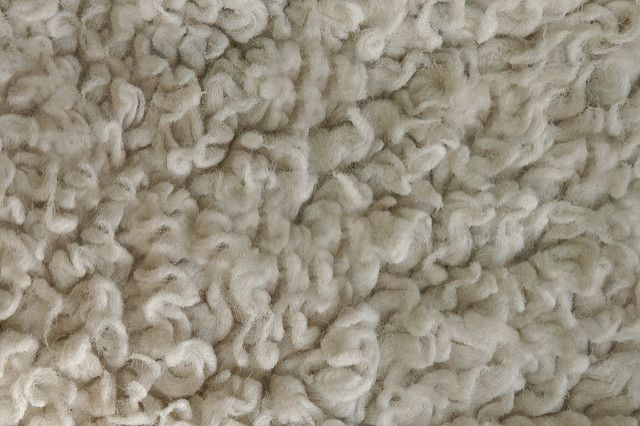 How To Revive Matted Carpet With