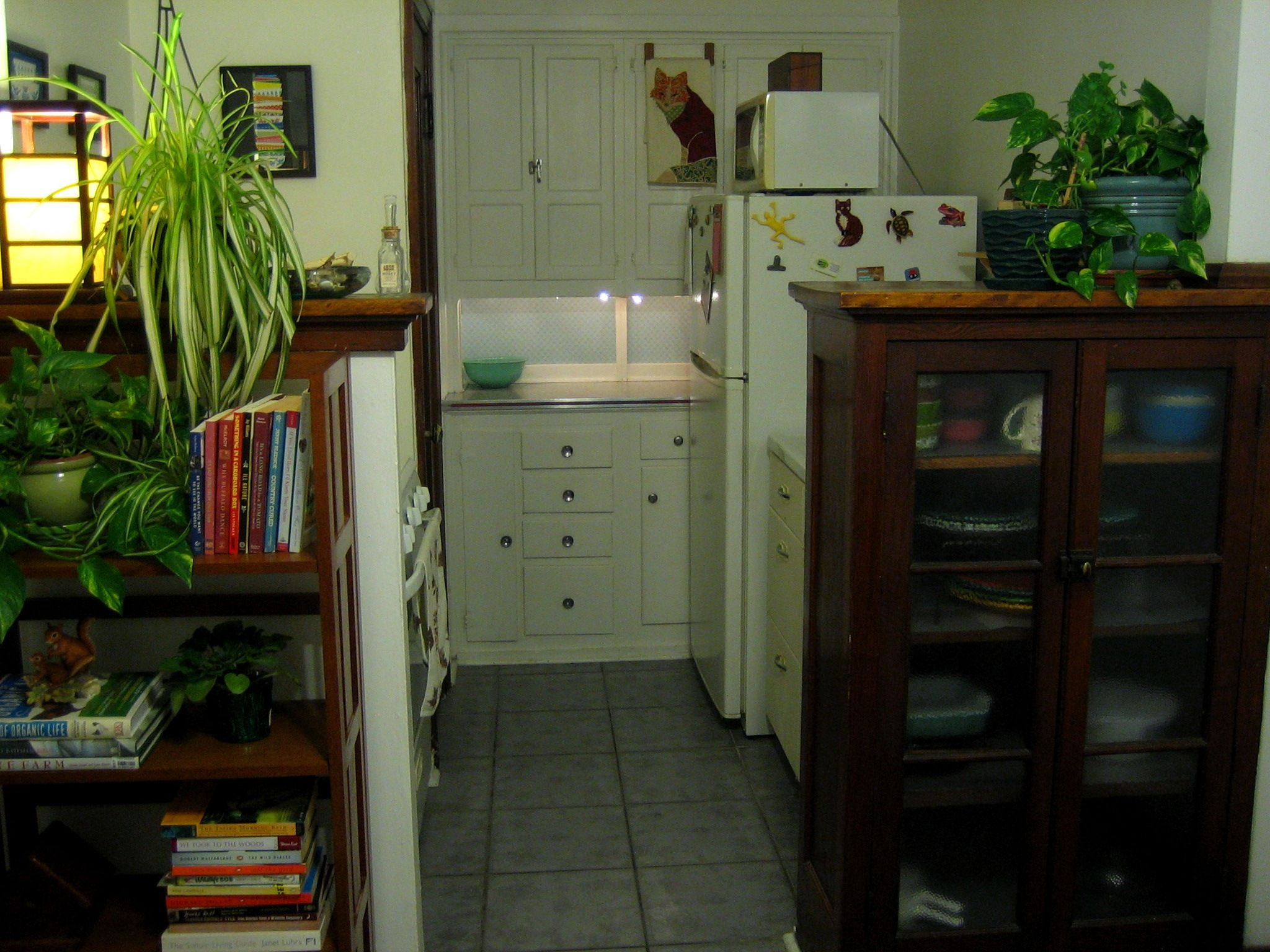My tiny kitchen.