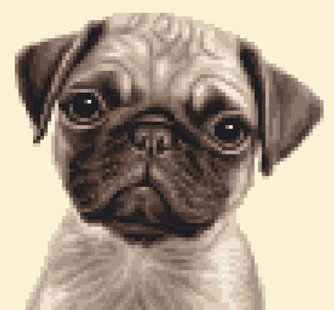 All materials included PUG dog complete counted cross stitch kit