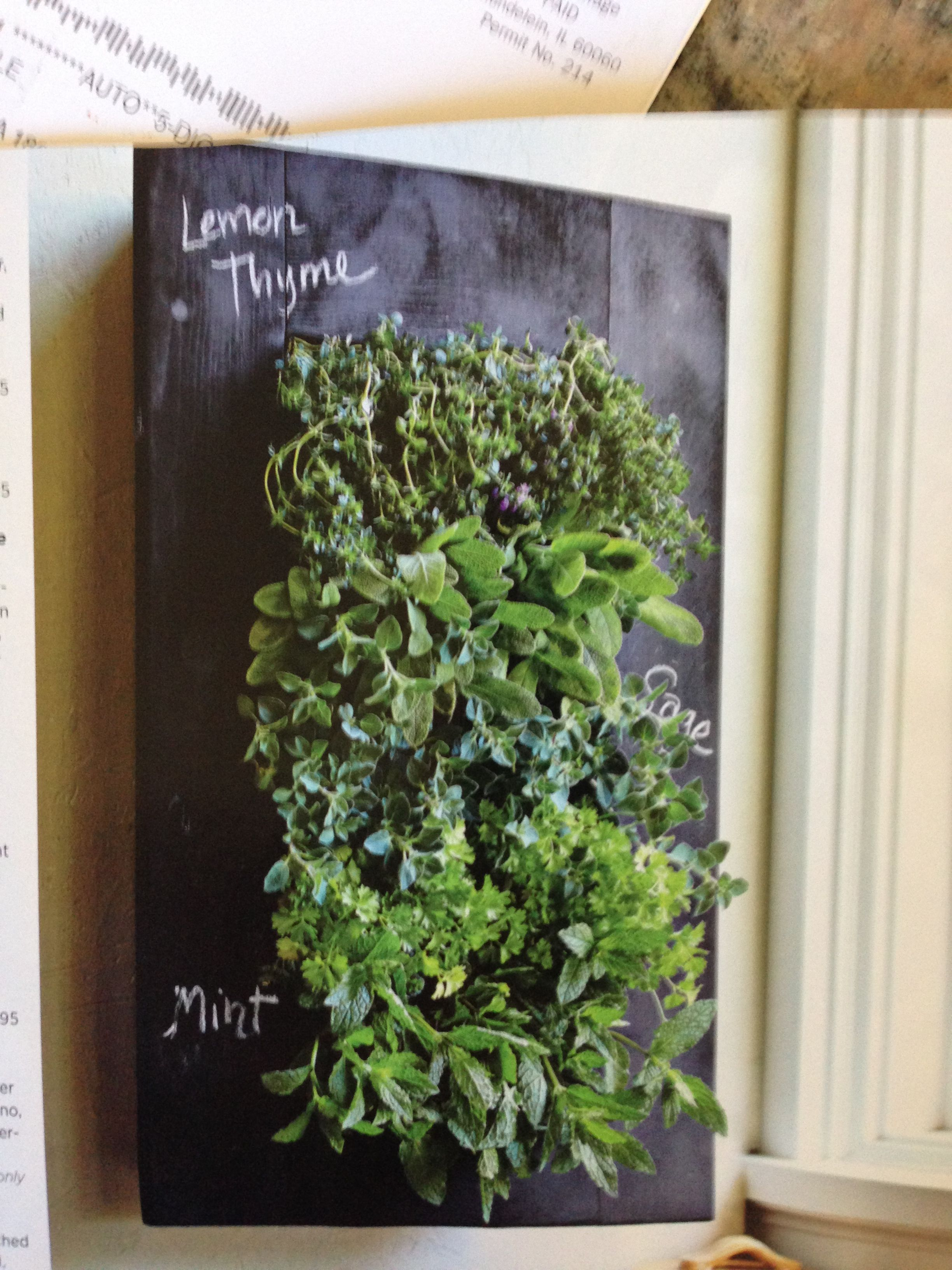 Chalkboard framed vertical herb garden from pottery barn...I know this vertical herb garden would be super DIY easy. rows (think of this slash  / shape going out from the the back wall of the box) and make sure you have a way to add water at the top and catch the runoff at the bottom. Find a frame or make your own, then spray-paint using chalkboard spray paint.