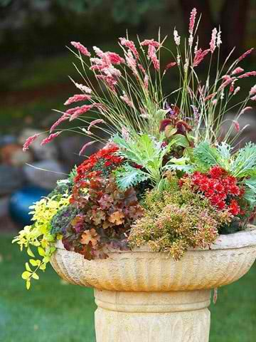 Bountiful Birdbath A Shallow Container Filled With Gorgeous Fall