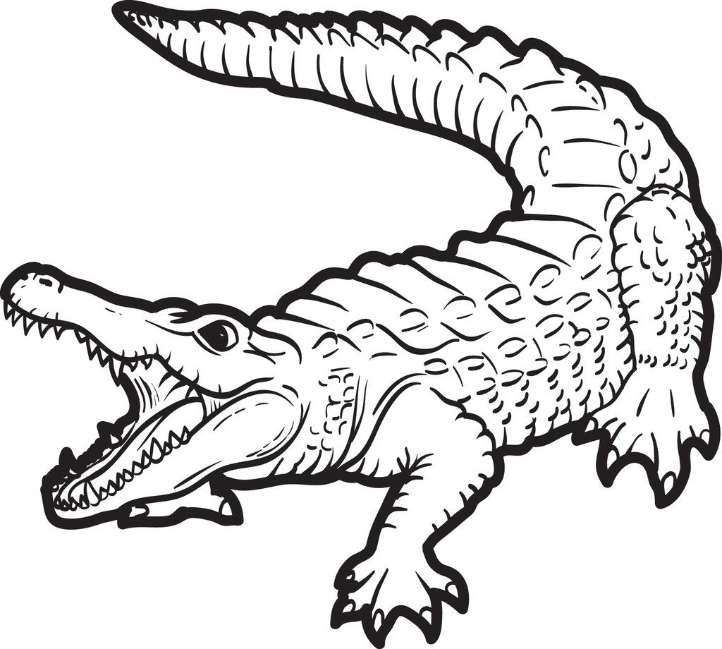 Alligator Coloring Page 2 With Images Animal Coloring Pages