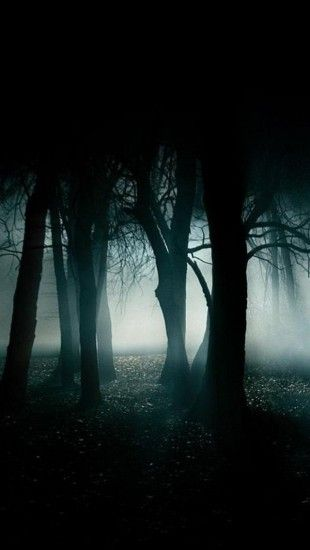 Dark Forest Iphone Wallpaper : forest, iphone, wallpaper, Forest, IPhone, Wallpapers, Wallpaper,, Gothic, Wallpaper, Iphone