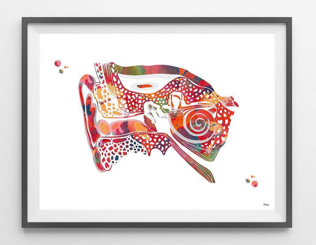 Ear Anatomy Watercolor Print Audiology Poster Cross