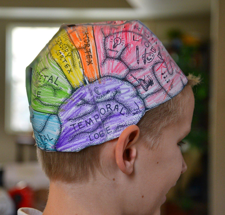 Brain hats (cerebral cortex) | Science experiments kids ...