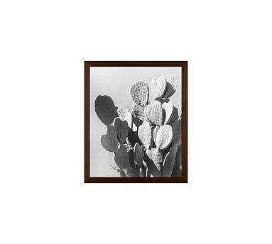 Monochrome Desert Cactus Framed Print by Jane Wilder, 11 x 13\