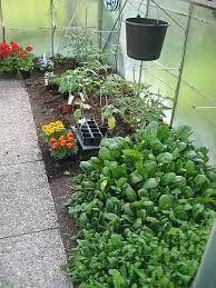 Bildergebnis Fur Gewachshaus Bepflanzen Garten Inspiration