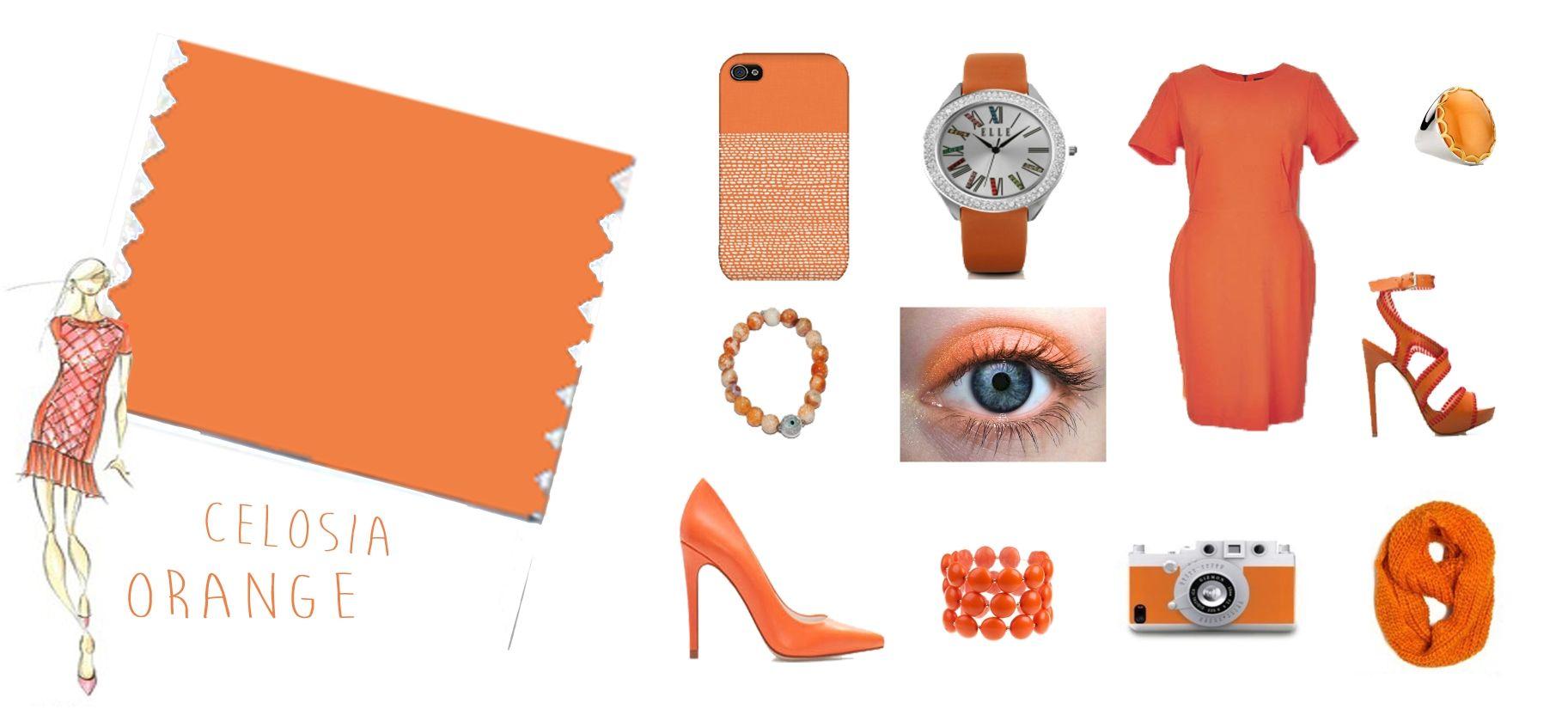 Celosia Orange - Naranja optimista, color de moda 2014. Color que despierta energia necesaria para el dia a dia, nos hara sentirnos seguros de nosotros mismos con actividad desbordante y emisor de buenas energias. Recomendable para llamar la atencion.