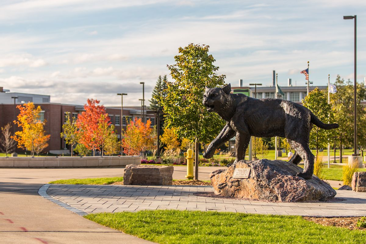 Our Wildcat statue through the seasons Fall Northern