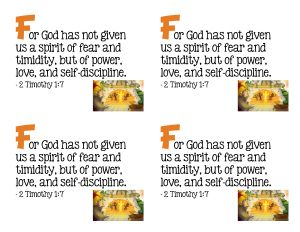 F For God has not given us a spirit of fear and timidity, but of Power, Love and Self-Discipline 2 Timothy 1:7 #discipline