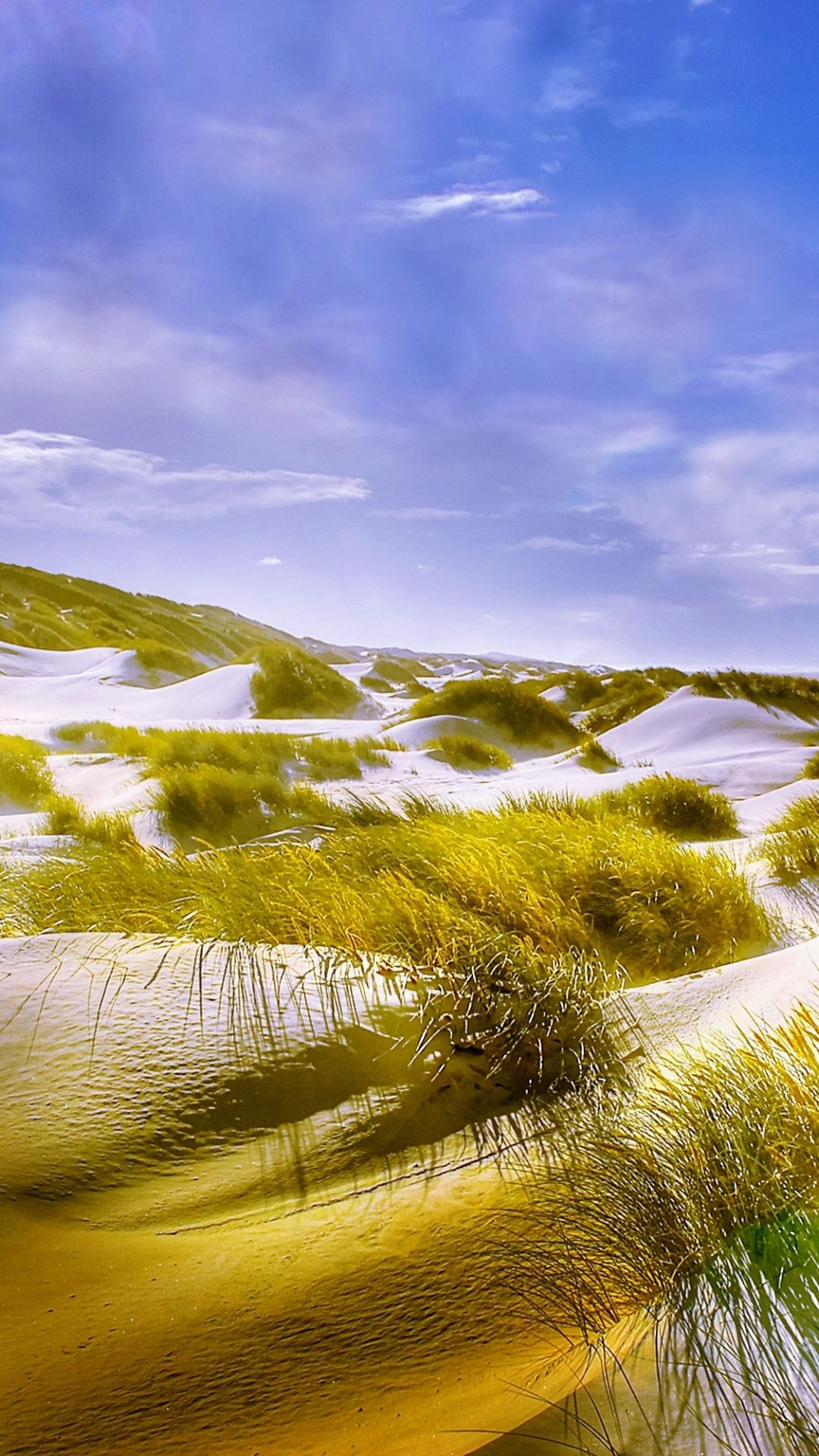 Grass Sand Beach Nature Landscape 1080x1920 Wallpaper
