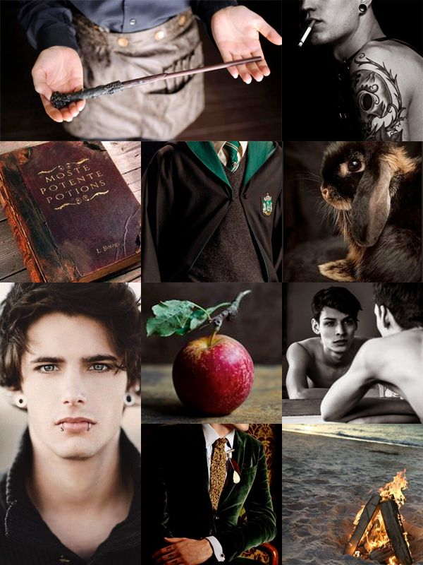 Colubrina Harry Potter Characters Draco And Hermione Harry Potter Next Generation