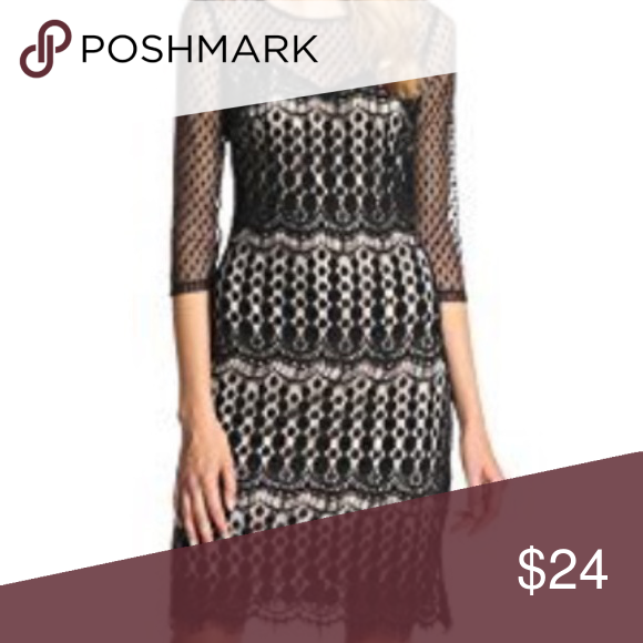 Sangria Black Lace Contrast Dress My Posh Picks Pinterest
