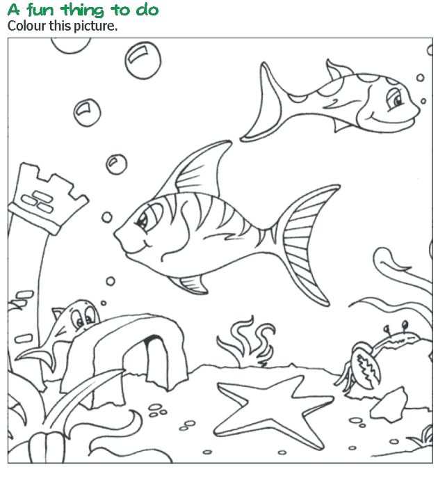 Grade 3 Reading Lesson 17 Poetry Silver Fishes Fish Coloring Page Animal Coloring Pages Free Printable Coloring Pages