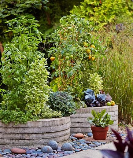 Cheap Gardening Ideas: Container Gardens For The Midwest