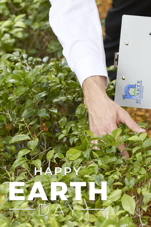 Environmentally conscious alternative to traditional pest