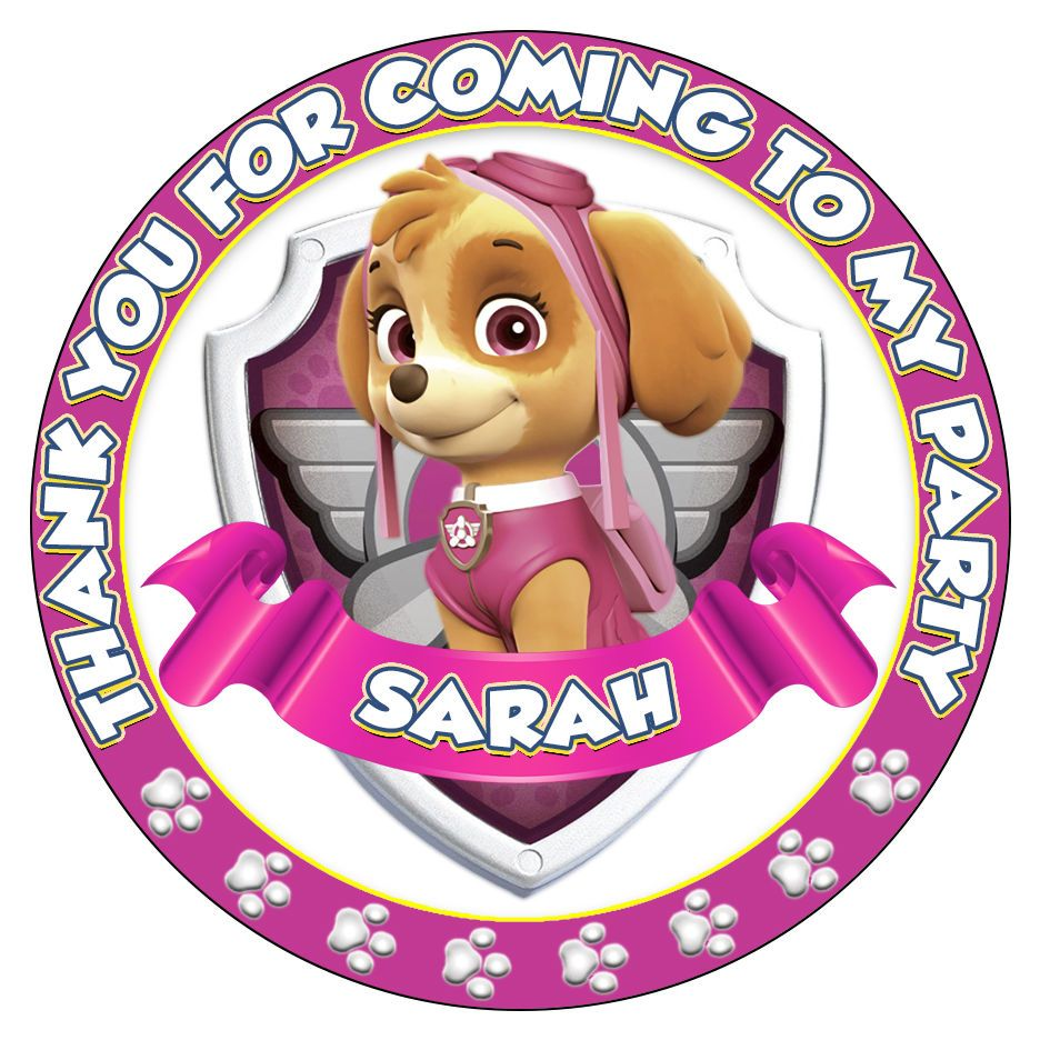 Details About Personalised Paw Patrol Stickers Skye