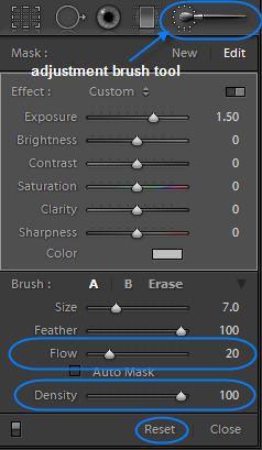 Adjustment brush in lightroom