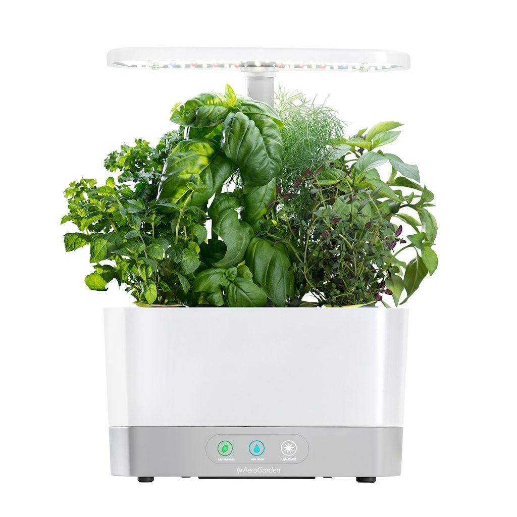 Aerogarden Harvest With Gourmet Herb Seed Pod Kit Herb 400 x 300
