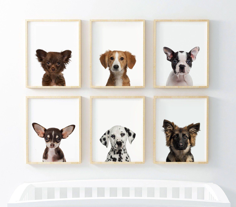 Puppy Dog Prints Nursery Puppy Print Animal Nursery Art Baby Animal Nursery Dog Photography D Baby Animal Nursery Animal Nursery Art Nursery Animal Prints