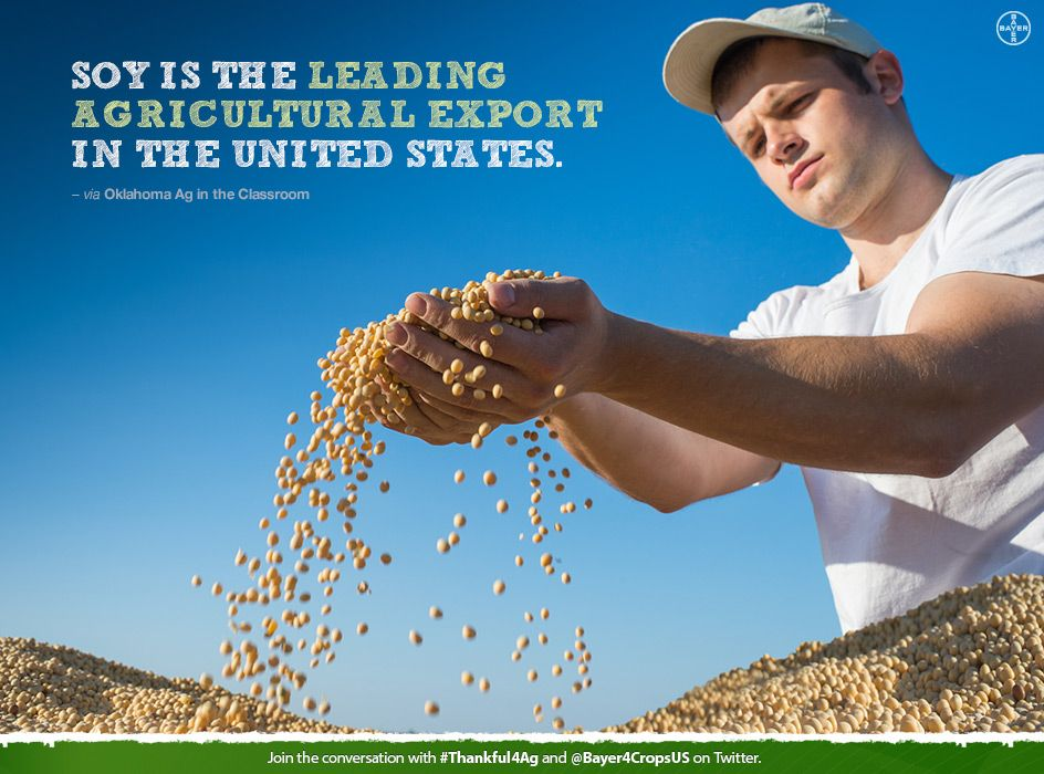 Help bayer cropscience give 10 meals to feeding america