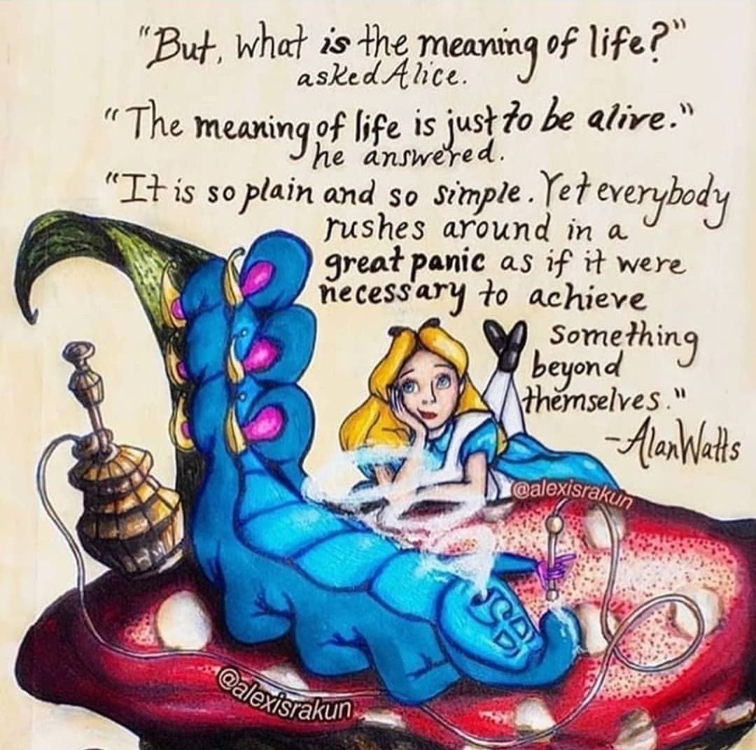 We All Love Motivation Now It S Time To Make It Happen Here Http Bit Ly 33gvjtv In 2021 Alice And Wonderland Quotes Wonderland Quotes Art Quotes Funny