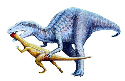 Theropod Dinosaur Of The Jurassic Period Eating A Smaller Ornithopod
