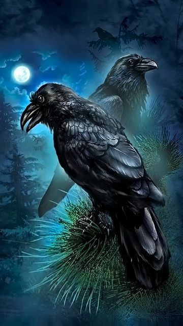 Download 360x640 «Ravens» Cell Phone Wallpaper. Category
