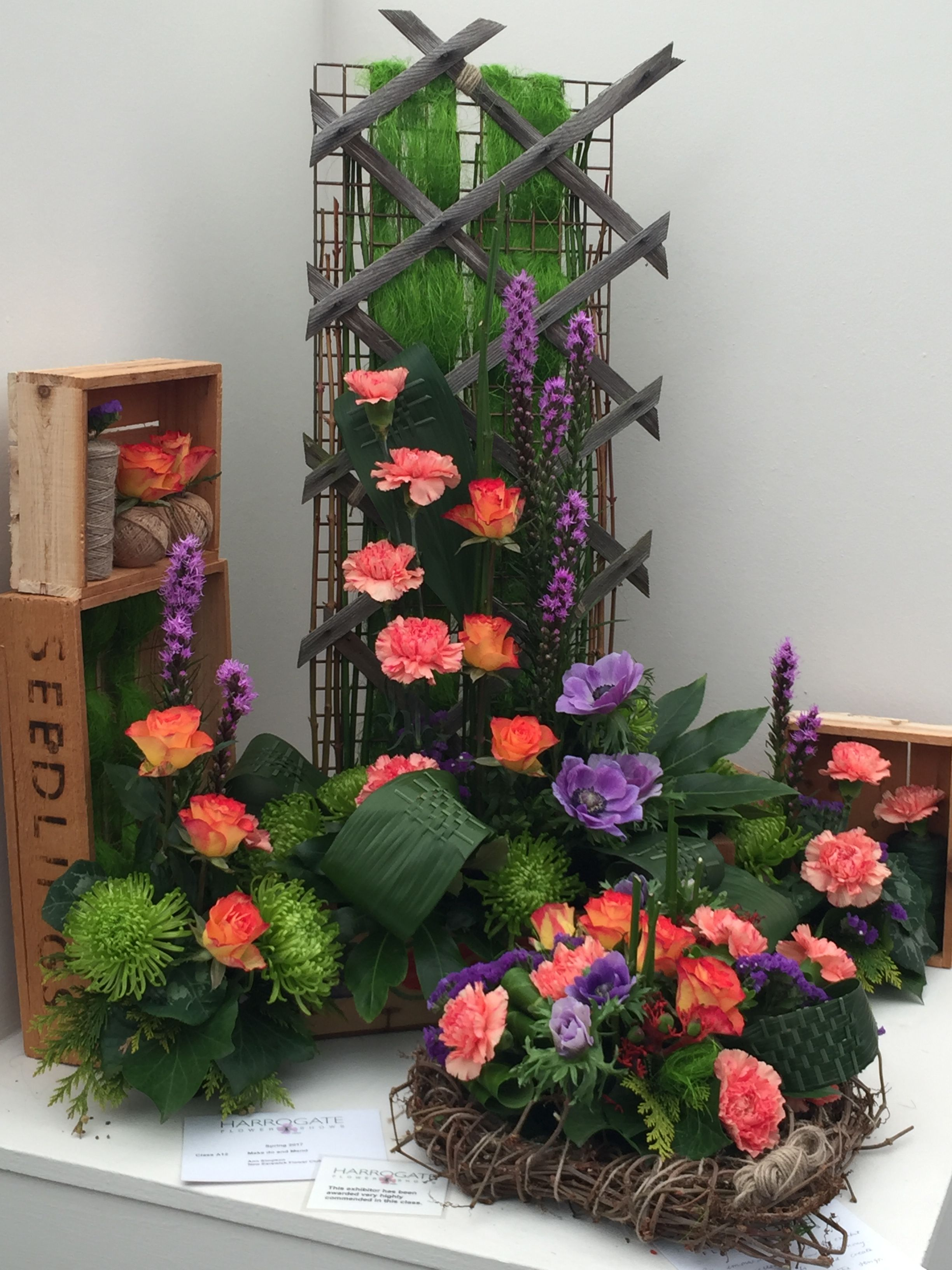 Harrogate Spring Flower Show 2017 Gardens Flowers And Ideas