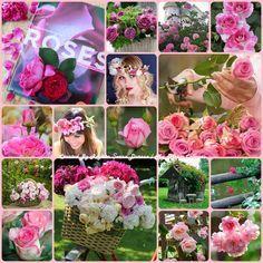 '' Roses '' by Reyhan Seran Dursun