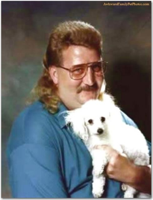 The Tri Fecta Mullet Mustache And Mini Dog All In One