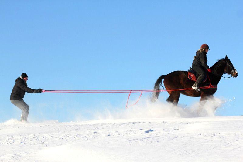 Ski Jöring mit Pferd