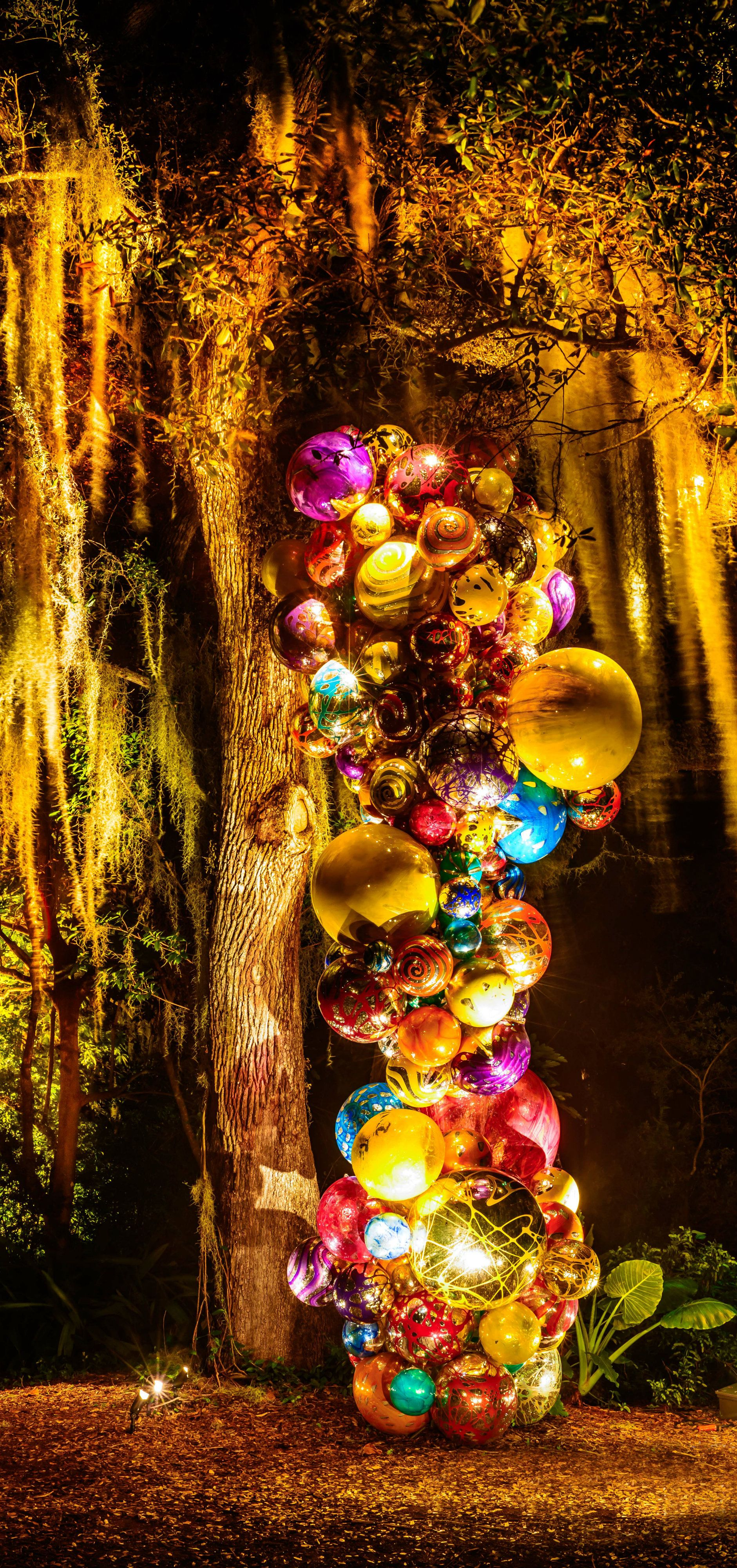 Fairchild Tropical Garden, Miami Chihuly at night | Chihuly glass ...