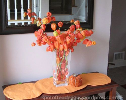 Dried Flowers: Chinese Lanterns | Holiday decorating ...