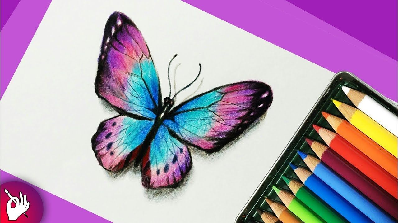 How To Draw A Butterfly With Colored Pencils Pencil Drawing Color Pencil Sketch Color Pencil Drawing Butterfly Drawing