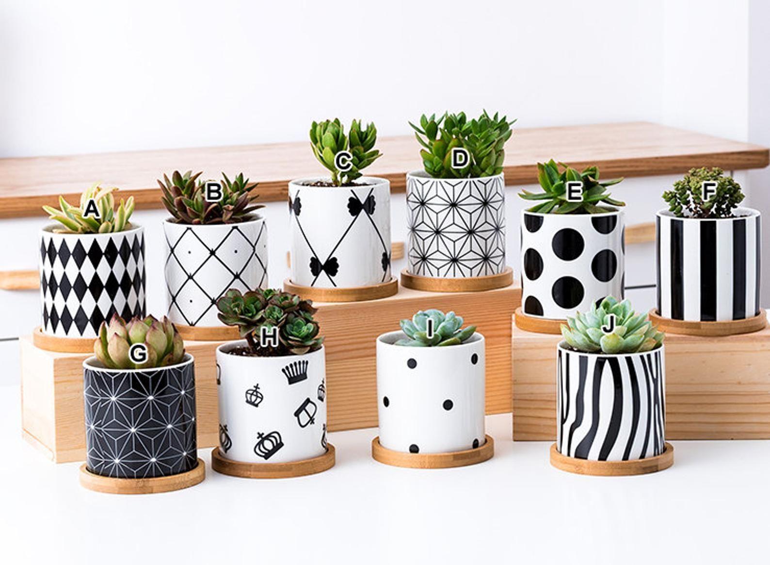 Modern Style Ceramic Planter Flower Pot Succulent Planter Etsy In 2020 Painted Pots Diy Painted Plant Pots Plant Pot Design