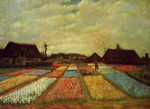 Campo de tulipanes.  Van Gogh