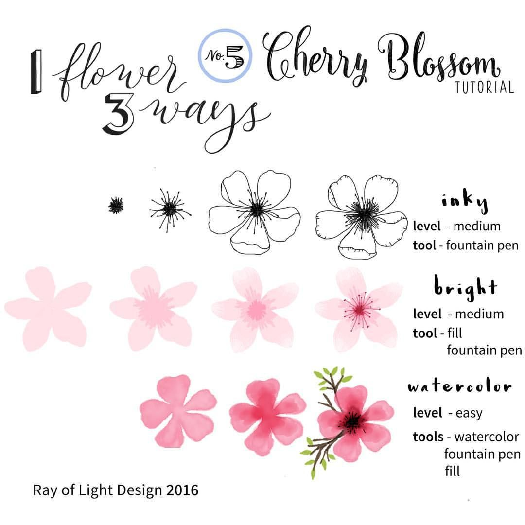 Nothing Says Spring Like Cherry Blossoms Here Is A Tutorial On 3 Ways To Draw One Che Easy Flower Drawings Flower Drawing Tutorials Cherry Blossom Painting