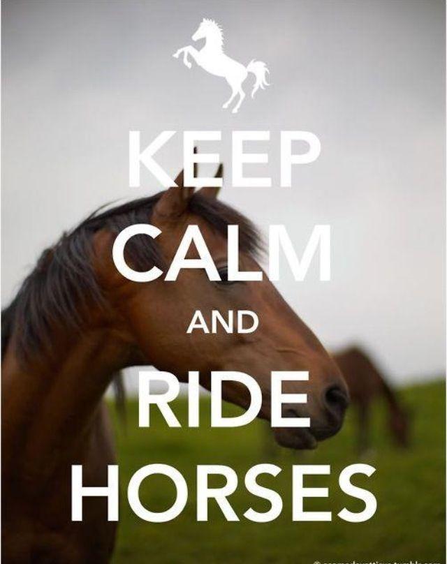 #keep #calm #caballos