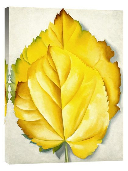 2 Yellow Leaves (Yellow Leaves), 1928 by Georgia O'Keeffe (Giclee) by Global Gallery at Gilt